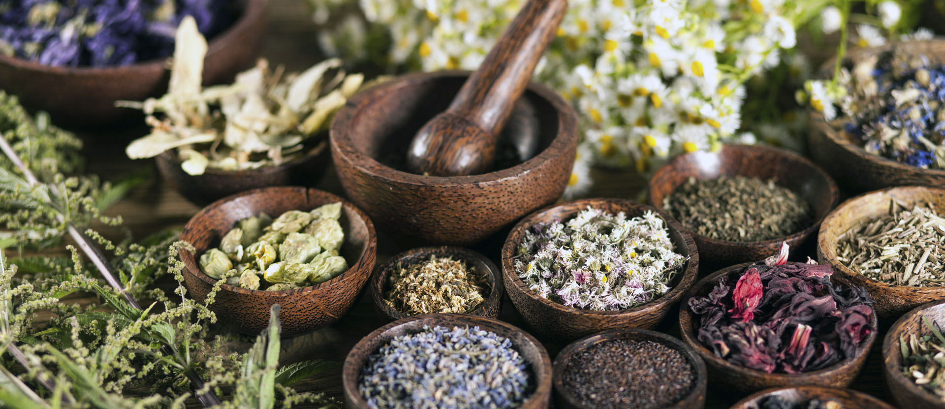 The Yin of Health with Chinese Medicine