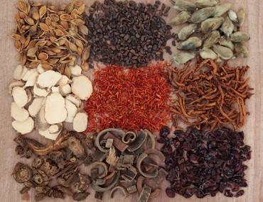 Chinese Herbal medicine in Burlington VT